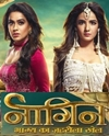 Naagin 4 19th January 2020